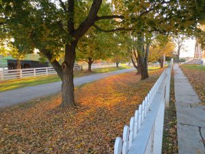 Shaker Village of Pleasant Hill - the Turnpike